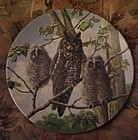 Knowles Treetop Trio Long-eared owls 3rd issue plate