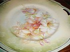 Antique RS Germany Floral cake dessert set