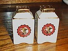 Vintage porcelain souvenir shakers Northern Illinois University Delkab