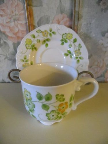 Nikko Ironstone Spring pattern Cup and saucer