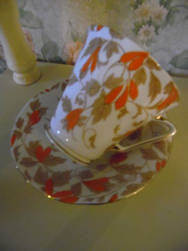Royal Grafton Ashley Orange bone china cup and saucer England