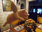 Porcelain flying pig ornament by Mardi