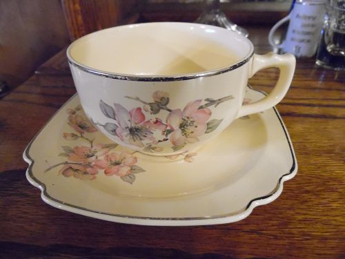 Wells China Homer Laughlin pattern C-84 Century shape cup n saucer
