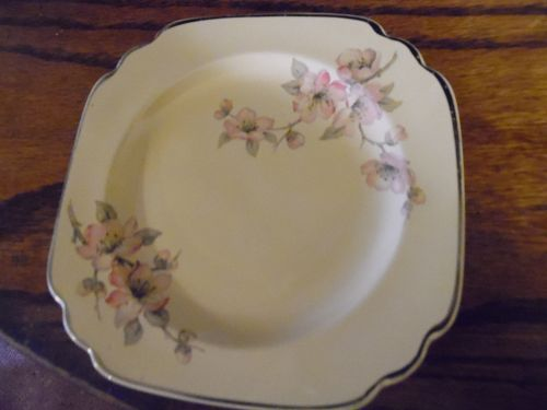 Wells China Homer Laughlin pattern C-84 Century shape b/butter plate