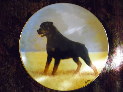 Danbury Mint collector plate Rottweilers  series Noble Companion