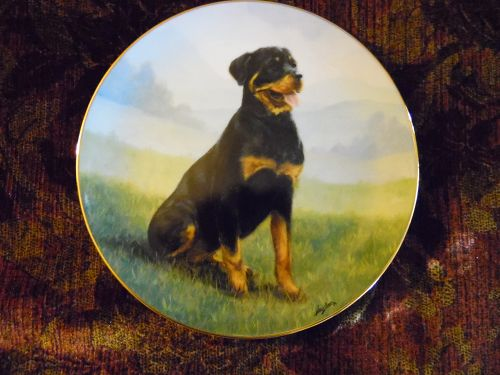Danbury Mint collector plate At Attention  Rottweiler series