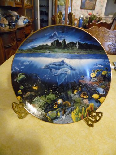 A discovery off Anahola Underwater paradise collector plate dolphins