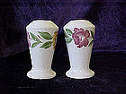 Hand painted pottery salt & pepper shakers