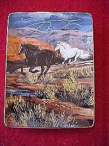 "Thunder in the Canyon ""Thunder and lightning"" horse pla"