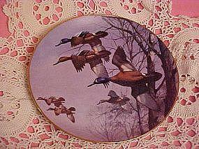 Misty Morning, Ducks taking flight series, David Maas