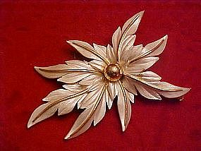 Sarah Coventry white poinsettia pin
