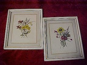 Pair of vintage botanical prints by MB