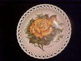 Peace Rose, The American Rose Garden, Hamilton