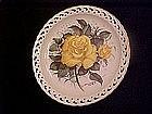 Eclypse, THe American Rose Garden, Paul J Sweany