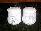 Wild iris decorated, salt and pepper shakers