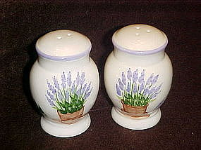 Lavender in flower pot, salt and pepper shakers
