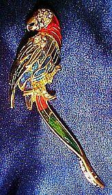 Large enamel and rhinestone parrot pin