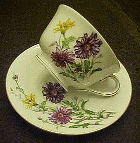 Craftsman China Madonna pattern, cup and saucer