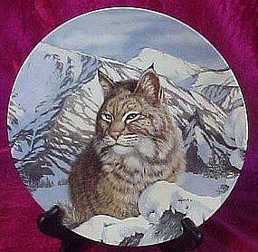 Quiet Vigil, Bobcat plate from Wild Spirits series