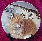 Sly Eyes, fox collector plate from Wild Spirits series