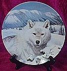 Timber Ghost, artic wolf  plate, Wild Spirit series