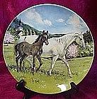 The Austrian Lipizzaner, Susie Whitcomb, Spode