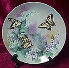 Western Tiger Swallowtails plate, On Gossamer Wings