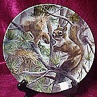 The Squirrel  plate, Friends of the forest series