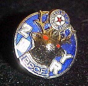 Elks B.P.O.E.  20 Year service / member pin
