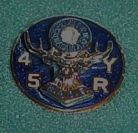 B.P.O.E. 45 year service /member / organization pin