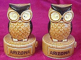 Retro owl shakers, souvenir of Arizona