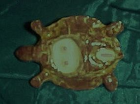 Anatomically correct woman turtle figurine x-rated