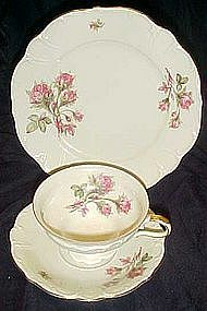 Edelstein Moss Rose fine china, cup saucer