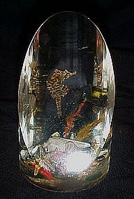Vintage collectible lucite paperweight,seahorse/ shells