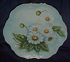 Hand painted cabinet plate daisies, signed McDonough