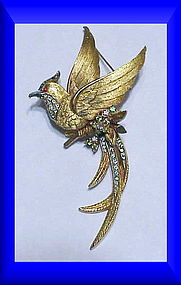 Boucher Bird of Paradise Brooch