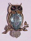 Reja sterling blue topaz bellied owl brooch