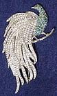 Mazer rhinestone peacock brooch