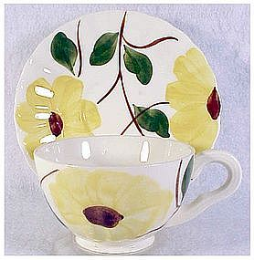 Ridge Daisy Blue Ridge So Pott cup & saucer set