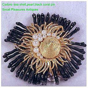 Cadoro sea shell,pearl and black coral brooch / pin