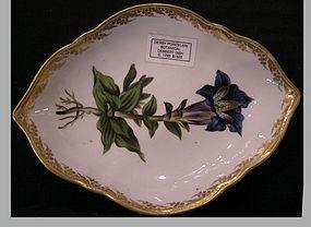 SOLD Derby Porcelain Botanical Triangular Dessert Dish