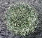 """Green Indiana PARROT 8 3/8"""" Plates"""