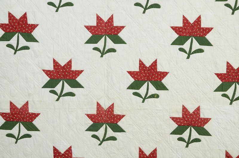 Maple Leaf Quilt with Botanical Border: Circa 186-