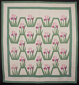 Iris Quilt: Circa 1920