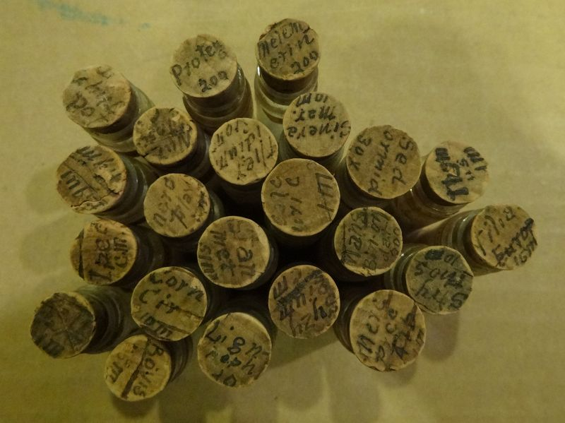 Scarce Late 19thC Homeopathic Medicine Bottles Pharmacy Vials - Lot #2