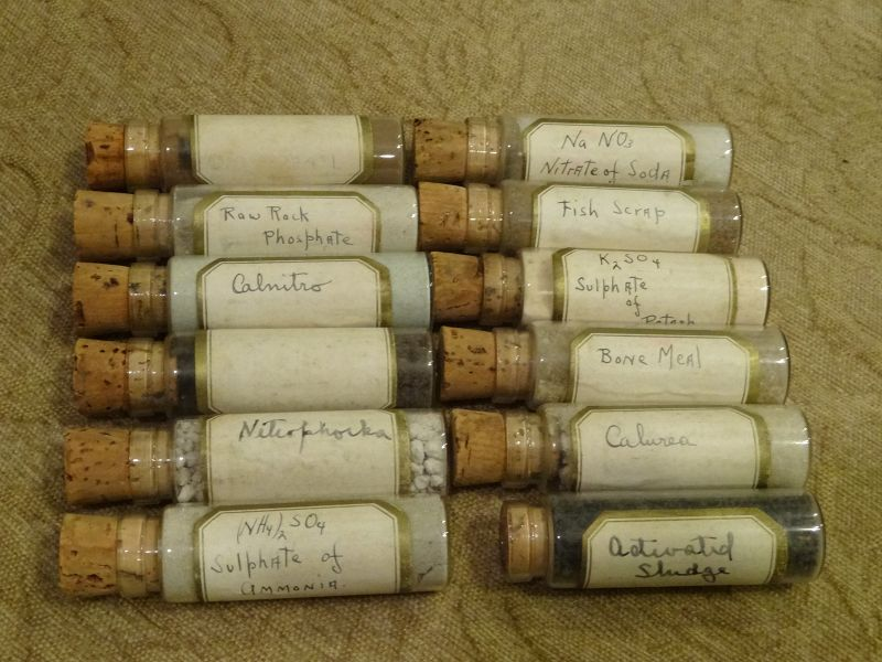 Choice Cased 19thC Homeopathic Medicine Pharmacy Vial Bottles