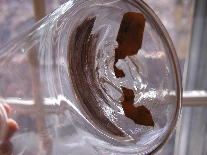 Large 19thC Apothecary Pharmacy Powder Bottle ALOE
