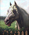 Percheron Horse by John N. Hess (American, 19th C.)