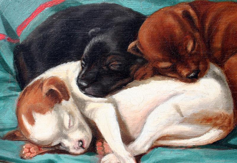 """Sleeping Puppies"" by J.H. Van Deventer"