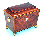 Small English Regency Tea Caddy in Yewwood